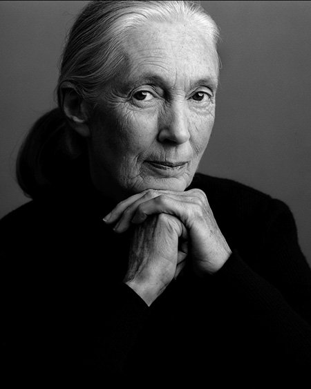 Dr Jane Goodall's Publications